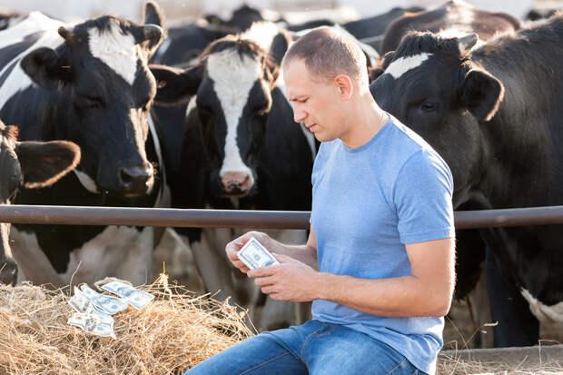 Британский фермер начал добывать криптовалюту при помощи навоза