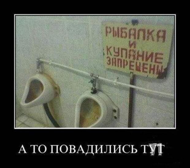 Один билет в мужской туалет...