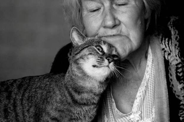 Смешная зарисовка про бабулю и спасение кота… Неожиданно!