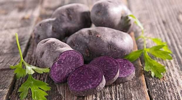 Картинки по запросу фиолетовый картофель