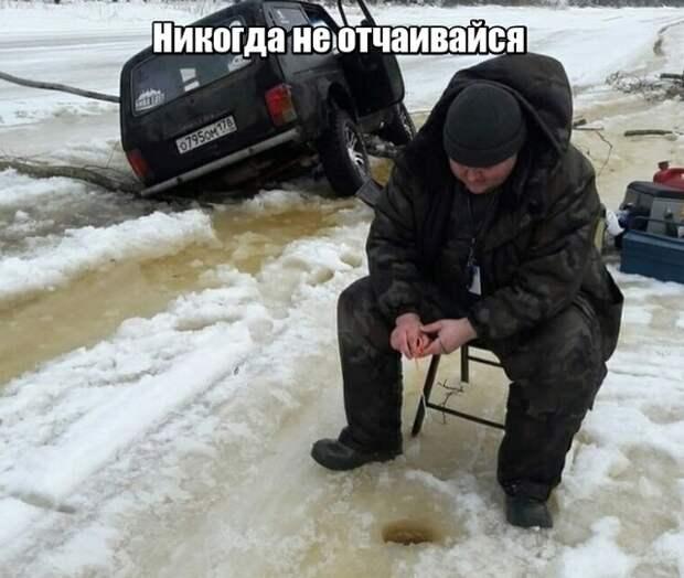 Смешные картинки и забавные картинки с надписью из сети (10 фото)