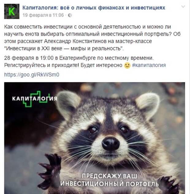 """В """"Ельцин-центре"""" проведут забег енотов"""