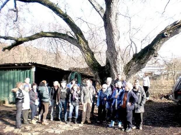 Чудеса Качинской долины: что скрывают пещеры Качи-Кальона и древнее готское кладбище