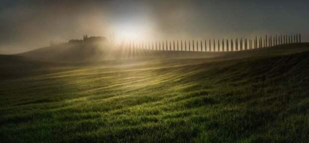 Главным победителем конкурса было фото, снятое весенним утром в Тоскане, Италия. Фотограф: Веселин Атанасов