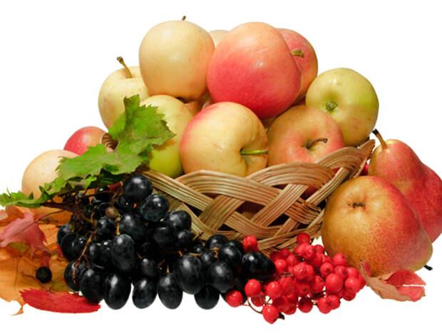 7 продуктов, которые противопоказаны при простуде