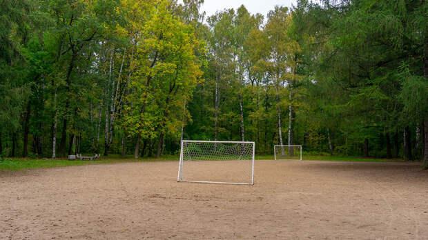 Небольшое футбольное поле