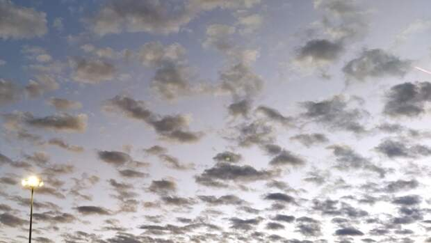 Облачность и до +23 градусов ожидается в Москве