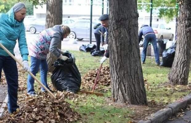 В Красноярске добровольцы вышли на ежегодный субботник