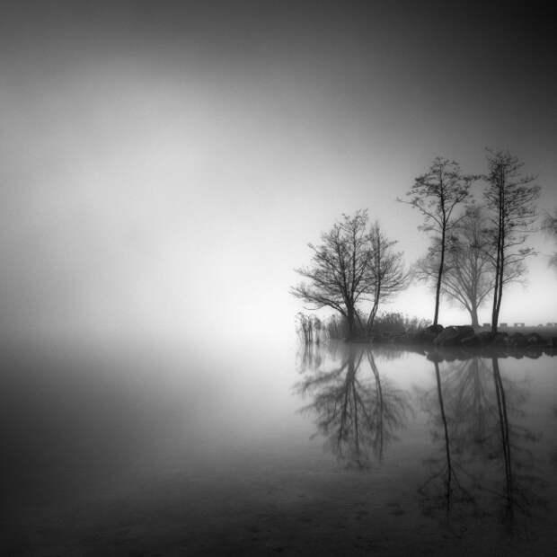 Пьер Пеллегрини: Гений простых пейзажей