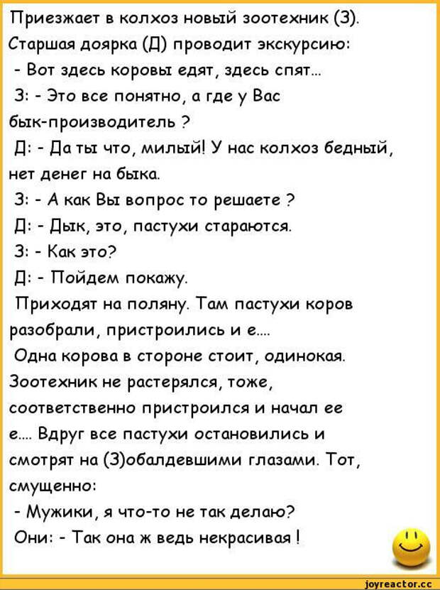 анекдоты-пошлые-анекдоты-240912 (508x681, 151Kb)