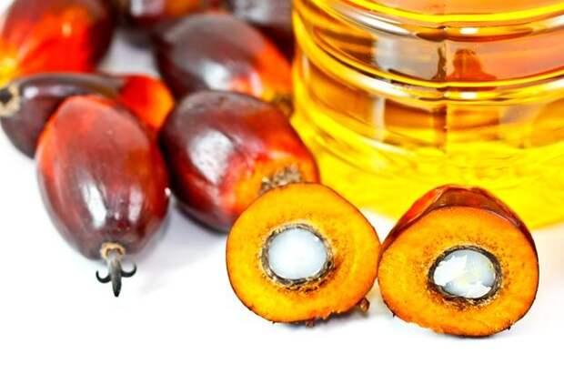 В России выработают меры по ограничению использования пальмового масла