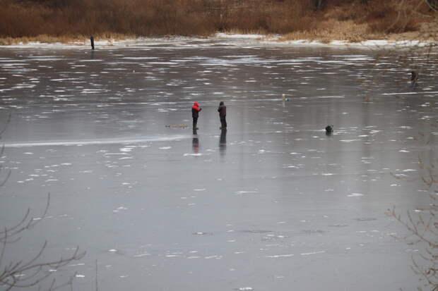 Пять детей провалились под лёд в Нижегородской области