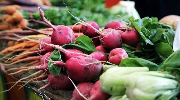 В Крыму в мае проведут более 700 сельхозярмарок