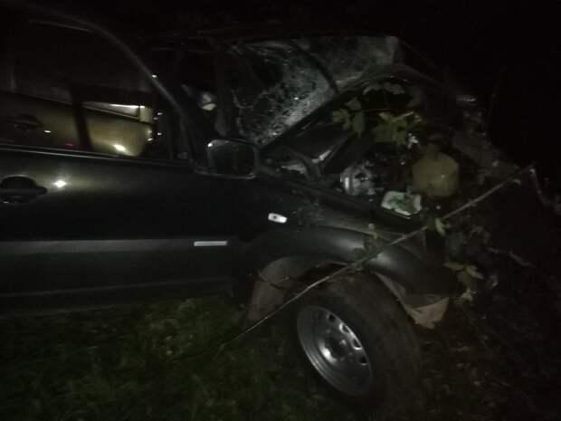 Лишенный прав водитель врезался в дерево в Глазове: погибли два человека