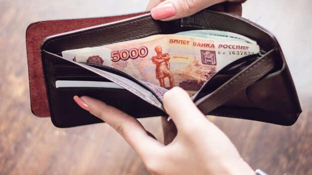 Россияне оценили желаемый размер безусловного дохода в 30 тыс. рублей