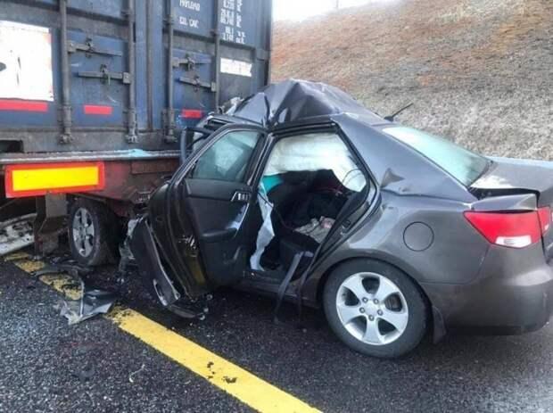 Авария дня. Страшное ДТП на платной автодороге в Новгородской области
