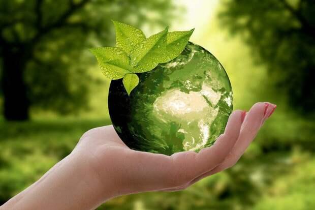Природа/ Фото pixabay.com
