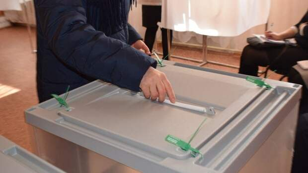 Наблюдатели из разных стран мира прибыли на выборы в Крым