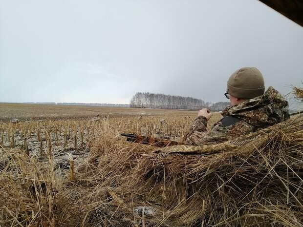 Перспективы законодательства об оружии и об охоте в России