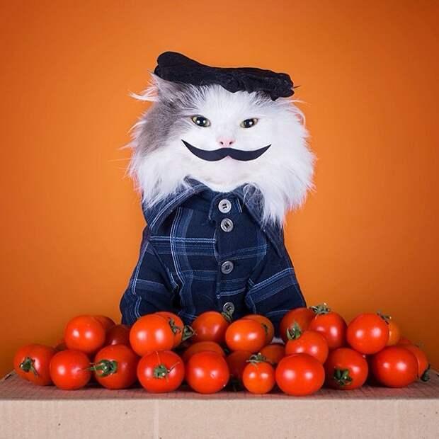 Фотограф Светлана Валуйская и ее кот Тотоша