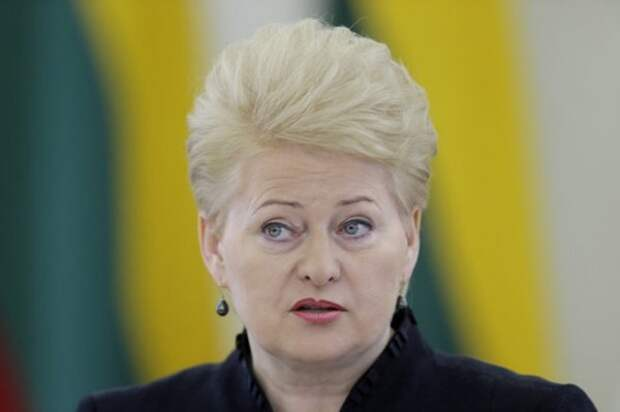 Новый виток пропаганды: президент Литвы назвала РФ основной проблемой Прибалтики