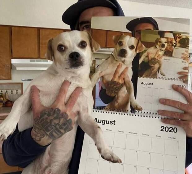 Смешные фото вечер 7 августа 2020