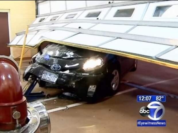 Пьяная автомобилистка с краденым питоном на шее врезалась в пожарное депо