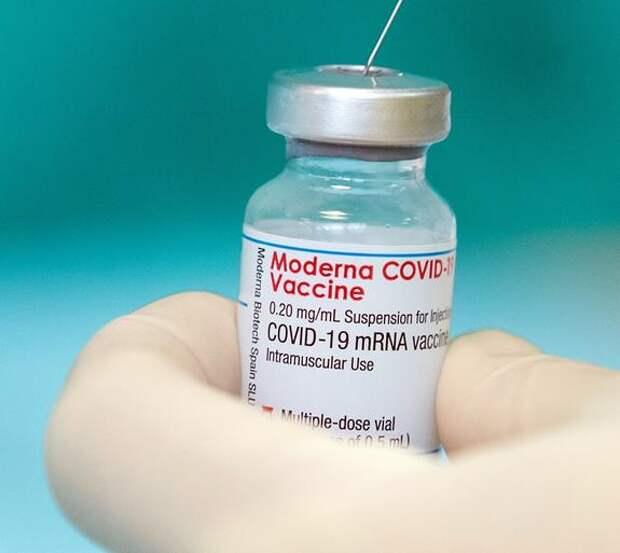 Бельгийский вирусолог Марк ван Ранст сравнил «лучшую» вакцину Moderna и «Спутник V»