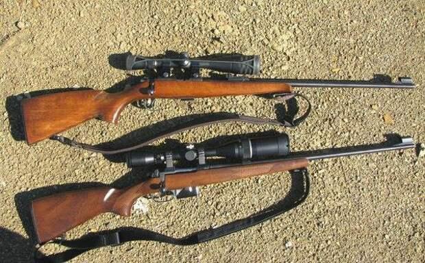Карабин CZ-527 .223 rem – отличная чешская винтовка для охоты и спортивной стрельбы