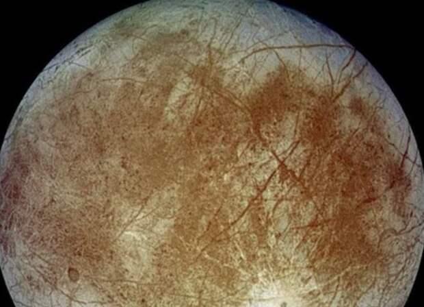 На спутнике Юпитера Европе могли жить существа, похожие на осьминогов