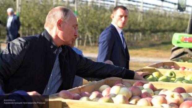 «Мир столкнется с продовольственным кризисом»: в КНР выяснили, справятся ли Россия и Запад