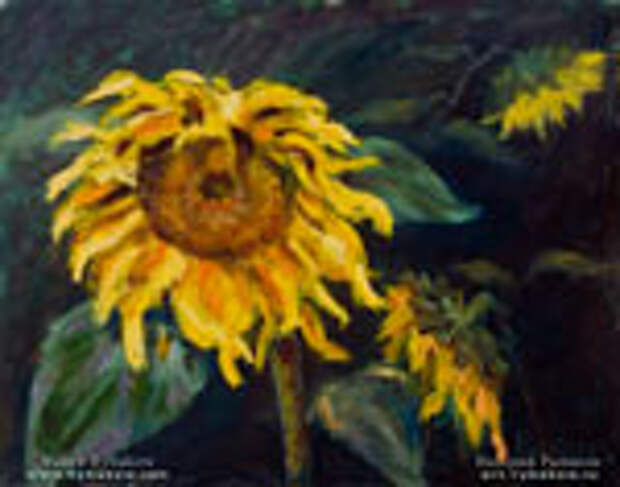 Новая цветочная картина маслом «Подсолнухи в конце лета».