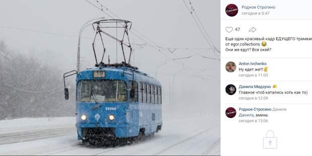 Фото дня: строгинский трамвай, рассекающий снежные бури