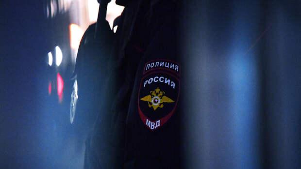 Одиннадцать участников незаконной акции у МГУ доставлены в полицию