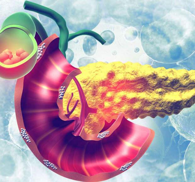 Как очистить поджелудочную железу с помощью натуральных средств