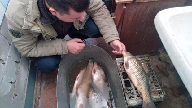 Эксперт рассказал, почему нельзя ловить рыбу вТаганрогском заливе Ростовской области