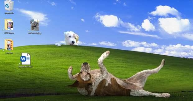 Праздники — псу под хвост. Microsoft устроил побег от карантина в рождественской рекламе