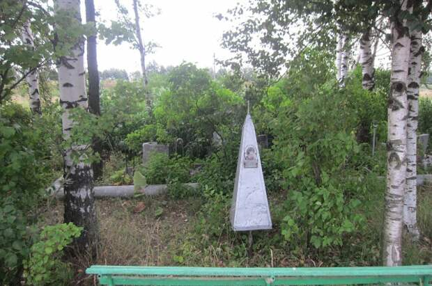 Родственники погибших посадили памятную рощу на месте падения самолета.