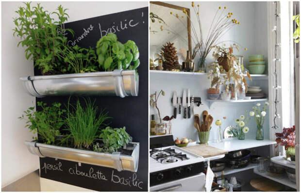 Растения оживляют интерьер маленькой кухни.