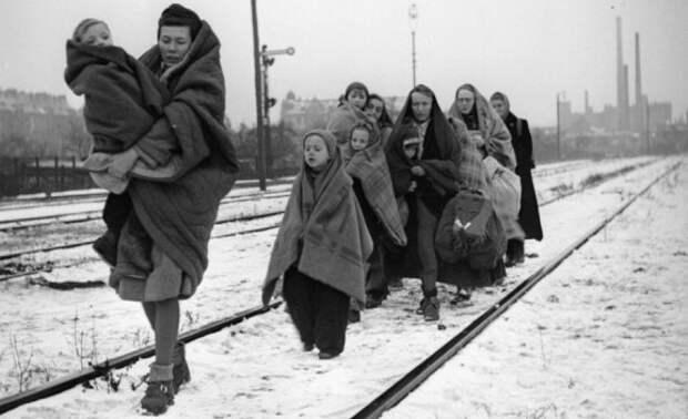 Депортация немцев из стран Восточной Европы и СССР. Депортация японцев и корейцев из Курилл и Южного Сахалина  (3 статьи)