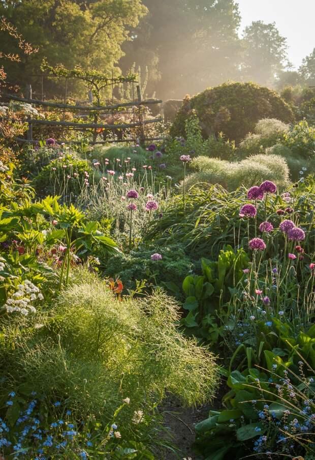 12 раз, когда кто-то сфотографировал свой любимый сад - и получилось что-то гениальное