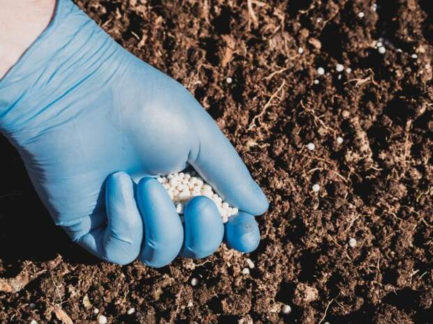 внесение минеральных удобрений