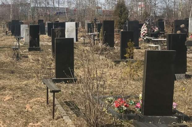 Кладбище «Березовая роща» расширят в Приокском районе Нижнего Новгорода