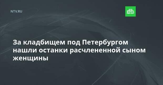 За кладбищем под Петербургом нашли останки расчлененной сыном женщины
