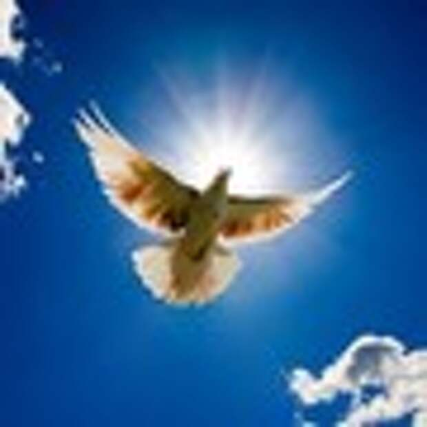 Умеешь обижаться – умей и прощать
