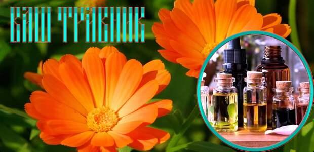 Эфирные масла и ароматерапия