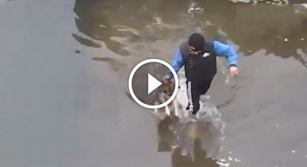 Парень спас тонущего щенка из холодной воды