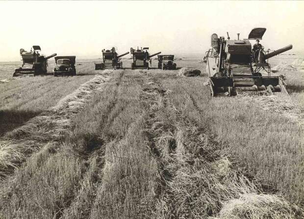 Сколько человек «кормит» фермер США и советский колхозник?