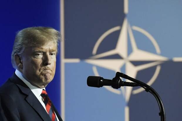 Американские СМИ: Трамп тащит лидеров G7 в свой клоповник