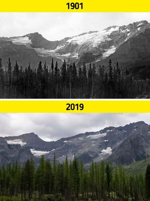 Всё познаётся в сравнении: снимки, которые показывают, как реально меняется наша планета